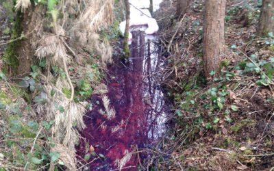 Traitement pollution fioul cours d'eau. Côtes d'Armor (22)